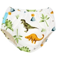 Charlie Banana 2 in 1 Swim Nappy & Training Pants