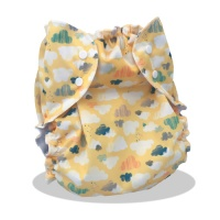 Apple Cheeks Size 3 Nappy 30-65lbs