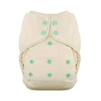 Thirsties Onesize Fitted Nappy